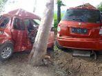 di-jalan-raya-desa-pulosari-kecamatan-ngunut-jumat-722020.jpg
