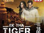 film-bollywood-ek-tha-tiger.jpg