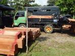 illegal-logging-batam-5.jpg