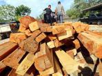 illegal-logging-pembalakan-liar-ditpam-bp-batam_20150406_095700.jpg