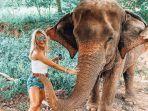 ilustrasi-berwisata-dengan-gajah.jpg