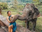 ilustrasi-berwisata-ke-thailand.jpg