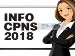ilustrasi-info-cpns-2018_20180910_110840.jpg