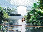 jewel-changi-airportsd.jpg