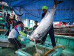 nelayan-melakukan-bongkar-muat-ikan-tuna-hasil-tangkapan-di-pelabuhan-muara-baru.jpg