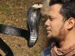 panji-petualang-dengan-mudahnya-bisa-mengamankan-ular-cobra.jpg