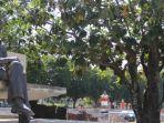 patung-soekarno-di-ende-dan-pohon-sukun_20180531_153531.jpg