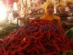 pedagang-cabe-di-pasar-baru-barek-motor-kijang-kota-kecamatan-bintan-timur_20170209_215310.jpg