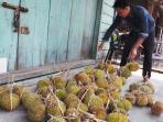 pedagang-durian-di-tarempa-anambas.jpg