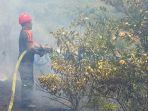 petugas-pemadan-kebakaran-berusaha-memadamkan-api_20170210_202556.jpg