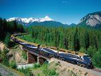 railrailway.jpg