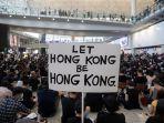 salah-satu-pengunjuk-rasa-di-bandara-internasional-hong-kong.jpg