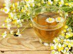 teh-chamomile.jpg