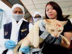 vaksinasi-anti-rabies-di-kampung-paon-sungai-rimu-bakung_20170707_111608.jpg