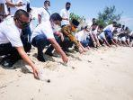 wabup-roby-kurniawan-lepas-penyu-di-trikora-beach-club.jpg