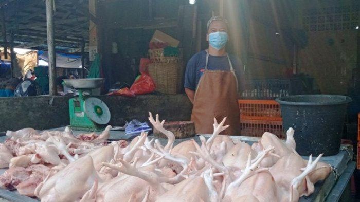 Ayam Potong di Pasar Tradisional Belitung Alami Turun Harga, Ini Sebabnya Menurut Pedagang