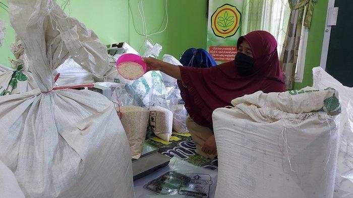 14,5 Ton Beras Danau Nujau Sudah Terjual Pasca Imbauan Konsumsi Beras Lokal