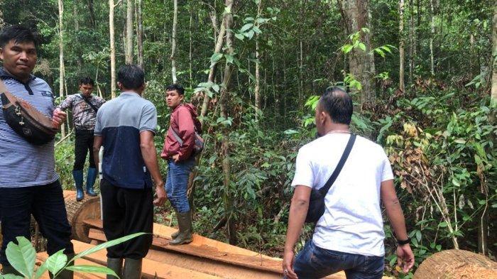 Bupati Burhanudin Dorong Polres Tuntaskan Kasus Illegal Logging di Belitung Timur