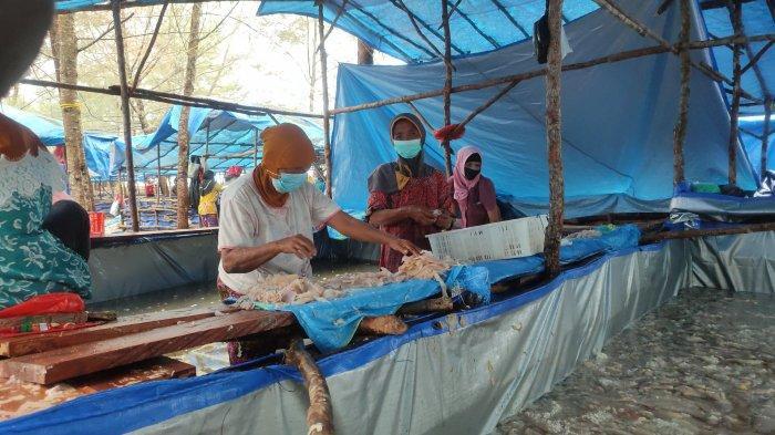 Warga Belitung Raup Pundi Rupiah Saat Musim Ubur-ubur