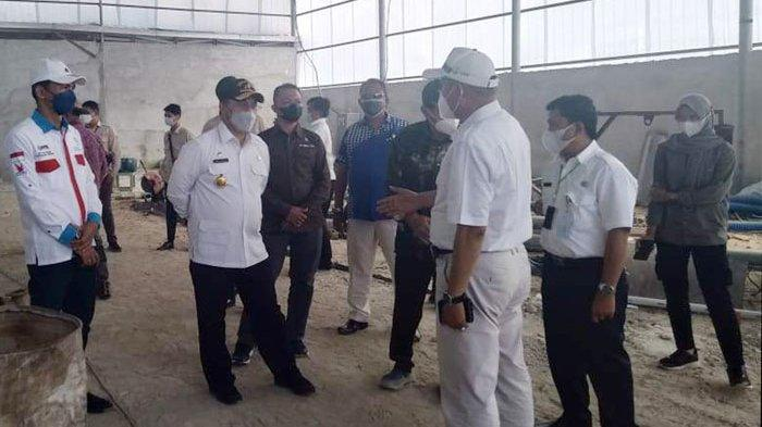 Asa Gubernur Erzaldi soal Kasesa, Bank Sumsel Babel Dukung KUR, Di Belitung 10 Hektare Siap Panen
