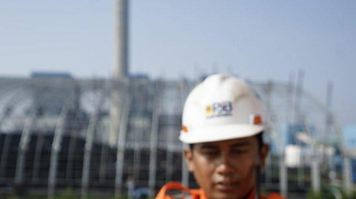 Amankan Pasokan Biomassa, Sinergi 3 BUMN Wujudkan Indonesia yang Lebih Ramah Lingkungan