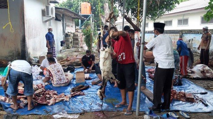 Idul Adha 1442 Hijriah, Polres Belitung Sembelih Delapan Sapi Dan Enam Kambing