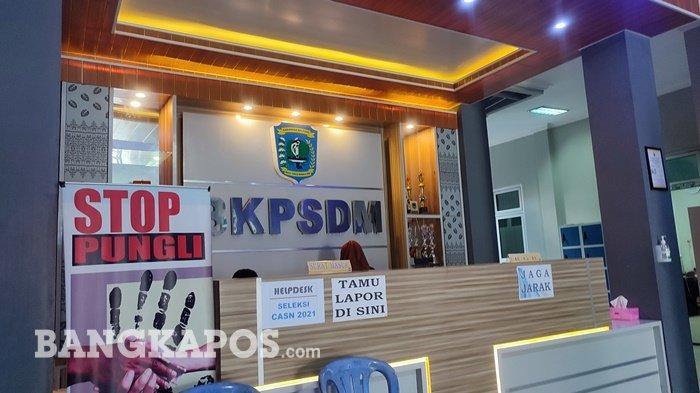Pendaftaran CPNS Sudah Ditutup, Begini Jumlah Pelamar di Kabupaten Belitung