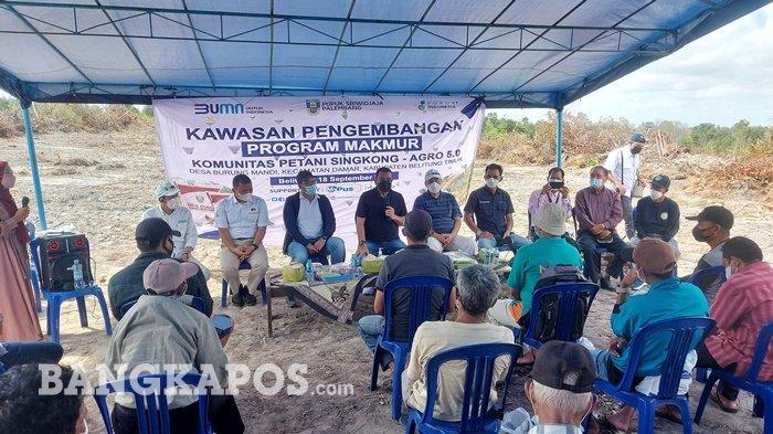 Staf Khusus Menteri Puji Alih Lahan Tambang Jadi Pertanian Ubi Kasesa di Belitung Timur