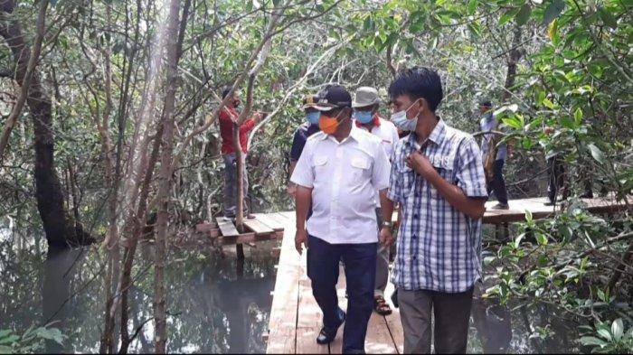 Suak Parak Mangrove Park, Sulap Mangrove Sungai Kubu Bermodal Papan Bekas Perahu