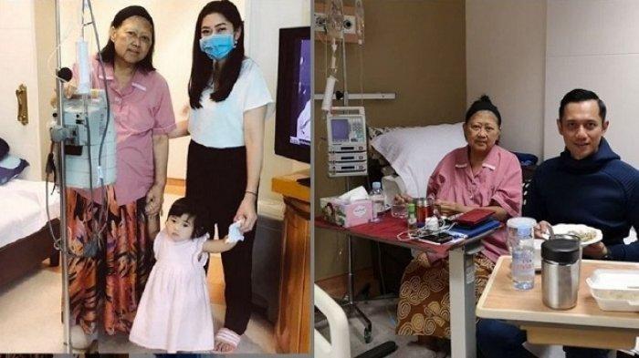 Kondisi Ani Yudhoyono Drop, Suami Annisa Pohan, AHY Minta Doa