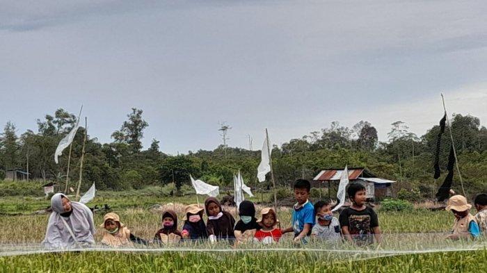 Para murid SD Alam Aqila Belitong saat melakukan ekplore lingkungan didekat Sekolah dalam Sya