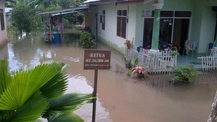 Dua Kolam Penampungan Lele Terendam Banjir, Apri Merugi