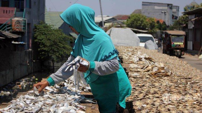 Hati-hati Beli Ikan Asin Jika Terdapat Ciri-ciri ini, Bisa Mengancam Nyawa Satu Rumah