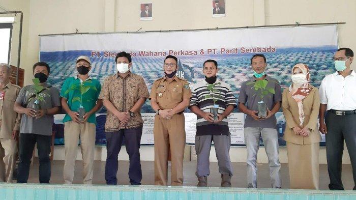 PT SWP Bantu 7.500 Batang Bibit Kopi - belitung-1407.jpg