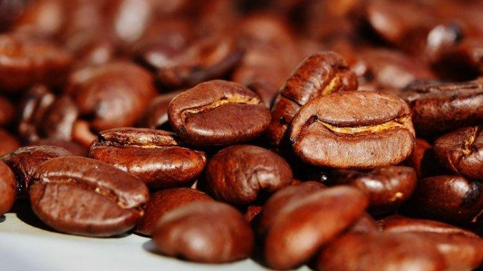 Ridwan Kamil Resmikan Jabarano Coffee di Australia, Sediakan Kopi Jawa Barat