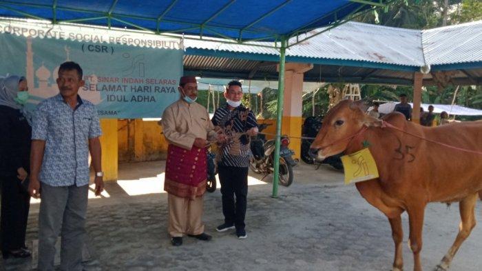 PT BHP Group Salurkan Belasan Sapi - bupati-belitung-h-sahani-saleh-sanem-menyerahkan-bantuan-sapi.jpg