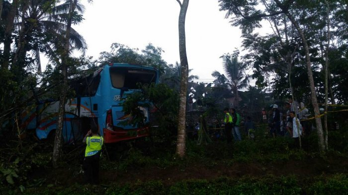 Bus Hilang Kendali, Terjun ke Jurang Sedalam 10 Meter