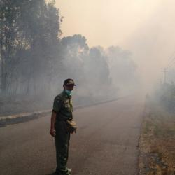 Kebakaran  Hutan Konservasi Bukit Maras Meluas