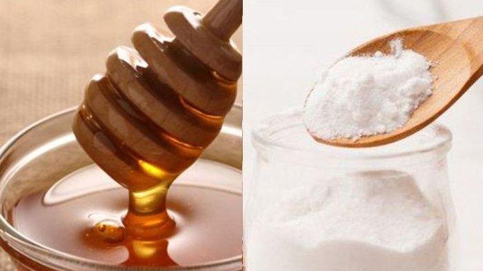 Campuran Madu dan Baking Soda Bisa Mencegah Penyakit Kanker, Jangan Pernah Tinggalkan Madu!