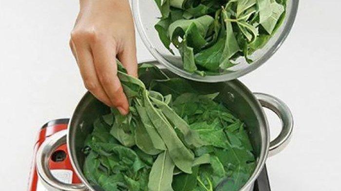 Wajib Tahu! Bahan Dapur Ini Rupanya Bikin Daun Singkong Tetap Hijau Walau Dimasak Lama
