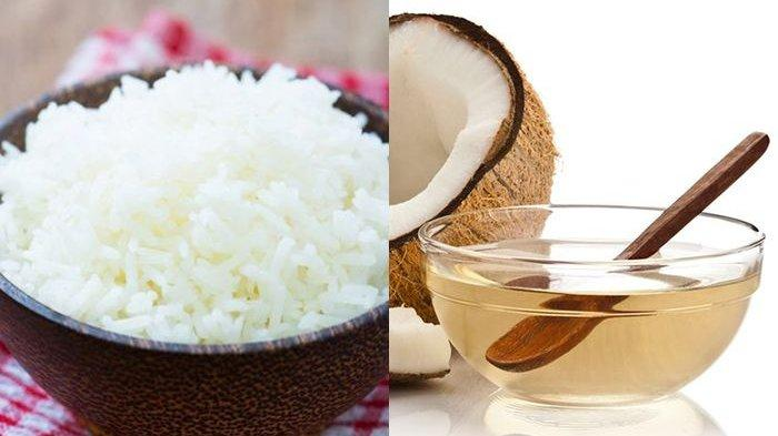Cara Masak Nasi Agar Tetap Sehat, Tambahkan Minyak Kelapa Bisa Mengurangi Kalori Sampai 50%