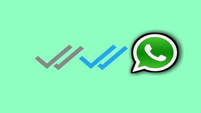 Begini Cara Hilangkan Centang Biru di Whatsapp, Tanpa Ketahuan Kalau Lagi Online