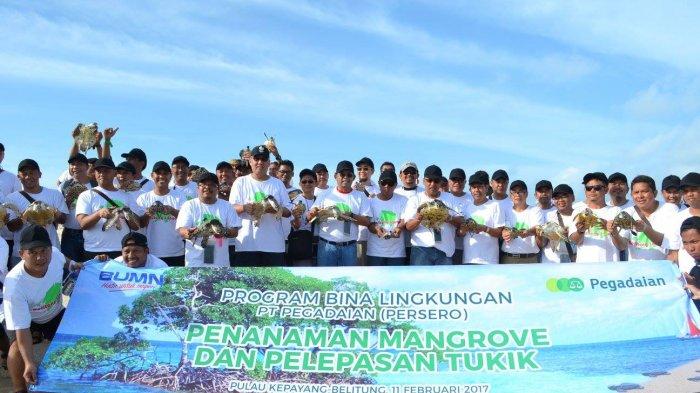 Pegadaian Peduli Lingkungan, Lepas Penyu dan Tanam Mangrove