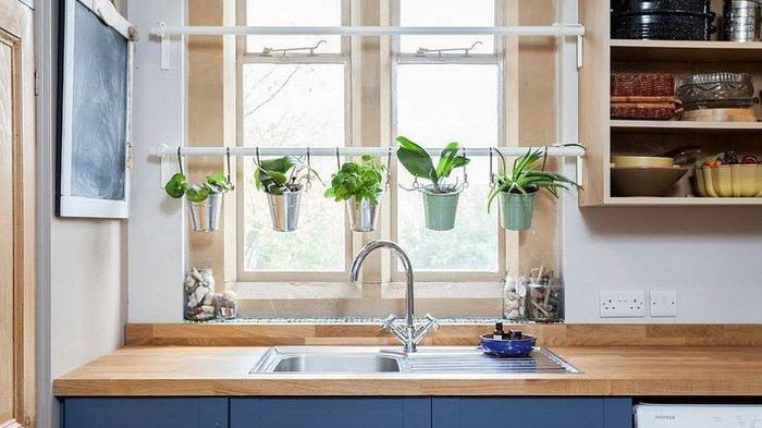 Coba 6 Ide Kreatif Berkebun Tanaman Herbal di Area Dapur