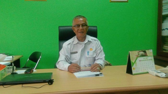 Kemhan Minta Belitung Siapkan Lahan 30.000 Hektar untuk Program Lumbung Pangan, Ini Kata Destika