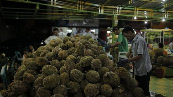 Indonesia Punya Jenis Durian Paling Banyak Dibanding Negara Penghasil Durian Lainnya, Ini Sebabnya