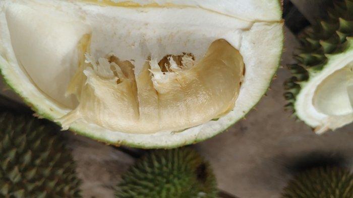 Buah durian hasil dari kebun Safari, di Desa Suak Gual, Kecamatan Selat Nasik, Minggu (27/12/2020).