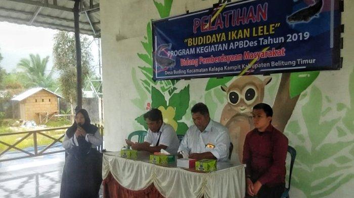 Budidaya Lele di Kabupaten Belitung Timur Menjanjikan, Butuh 350 Kilogram Per Hari