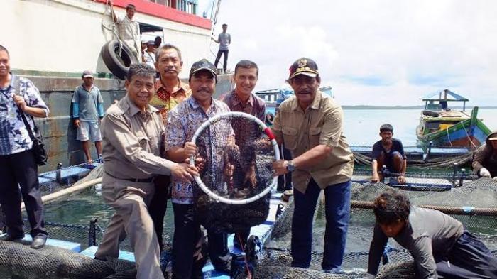 Belum Ada Ekspor Ikan ke Hongkong Lima Bulan Terakhir, Ini Penyebabnya