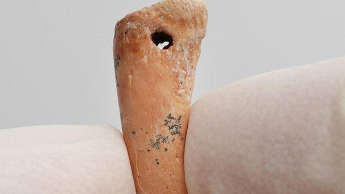 Begini Bentuk Perhiasan Tertua di Dunia Diperkirakan Berusia 30.000 Tahun